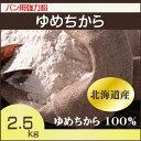 大感謝セール 北海道産 パン用超強力粉 ゆめちから 100% 2.5kg