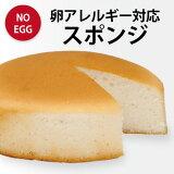 卵アレルギー対応スポンジケーキ(冷凍配送)(誕生日/お祝い/クリスマス) 【RCP】10P01Mar15