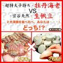 【送料無料】子持ボタンエビ500g+宗谷産生ホタテ200g!...