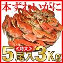 【送料無料】訳あり本ズワイガニ食べ放題5尾入3キロセット!カ...