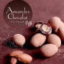 ギフトチョコレートアマンドショコラ◆ローストアーモンドの香ばしさが香るクセになる味わいアーモンドチョコチョコレート人気プチギフトスイーツ会社職場同僚彼女かわいいおしゃれお配りプレゼント