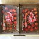 【送料無料】山形県産さくらんぼ(200g×2)紅秀峰旬の甘味と酸味のバランスを味わってください。サクランボ パック 旬 果物 くだもの ..