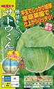 サトウくん「極甘キャベツ」(コーティング種子:40粒)