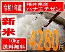 送料無料、粒揃い米処福井の美人米令和1年産 新米 福井県産ハナエチゼン 10kg美人画の米袋で全国直送