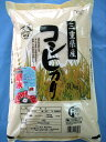 Meter that God admired, 20 kg of 24 yearly output Koshihikari (10kgx2) from Mie 20 kg are more advantageous when they buy it