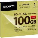 ソニー BD−RE録画用 100GB 2倍速 1枚