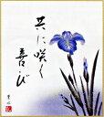 色紙 「菖蒲」(日本の伝統美)