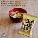淡路島産玉ねぎの即席フリーズドライ 味噌汁 1食9.2g 淡...