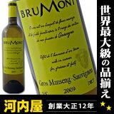 アラン?ブリュモン ガスコーニュ ブラン 白ワイン 750ml ワイン フランス 南西部 白ワイン kawahc