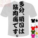河内國製作所 「多分、明日は筋肉痛です。Tシャツ」全5色。センテンス系おもしろTシャツ おもしろてぃしゃつ ドライTシャツ メール便は送料無料
