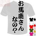 河内國製作所 「お馬鹿さんなの?Tシャツ」全5色。ユニーク漢字おもしろTシャツ 文字T-shirt