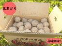 【送料無料】北海道産 ホクホクじゃがいも キタアカリ L/2Lサイズ 10kg 北あかり