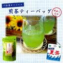 水出し煎茶 静岡茶 ティーパック 15P×3袋水出し エピガロカテキン スーパー緑茶 バイキング 水出し
