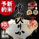 【予約】【新米】29年産 北海道産 ゆめぴりか 玄米 10kg (5kg×2袋セット) <玄米/白
