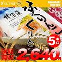 【新米】28年産 北海道産 ふっくりんこ 5kg  【送料無料】【北海道米 送料込み 米 お米 真空パック選択可】【10P03Dec16】