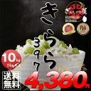 29年産 北海道産 きらら397 10kg (5kg×2袋セット)<白米> 【送料無料】【北海道米