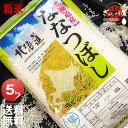 新米 令和元年産 YESクリーン ななつぼし 5kg <白米...