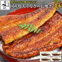 国産特大うなぎ蒲焼き 170g×4本ウナギ 鰻 蒲焼き 蒲焼 国産 国内産 夏の土用丑 土用の丑の日 冷凍食品 ひつまぶし ちらし寿司