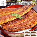 国産超特大うなぎ蒲焼き 200g×4本ウナギ 鰻 蒲焼き 蒲焼 国産 国内産 夏の土用丑 土用の丑の日 冷凍食品 ひつまぶし ちらし寿司