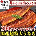 \贈り物にも大人気/超特大うなぎ蒲焼き 200g×3本セット...