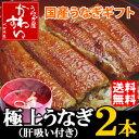 国産うなぎ蒲焼きギフトセット 大サイズ 150g-169g 2本セット「肝吸い付き」【送料無料 ウナギ 蒲焼き 鰻】