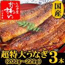 【夏の土用丑は7月30日】超特大うなぎ蒲焼き 200g-229g×3本セット【ウナギ 鰻 国産 贈り物】