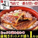 \夏はやっぱりうなぎ/国産うなぎ蒲焼きカットメガ盛り 1kgセット【送料無料 売