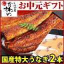 【お中元ギフト】国産特大うなぎ蒲焼き 170g×2本セット【国産 ウナギ 鰻 出産祝い 結