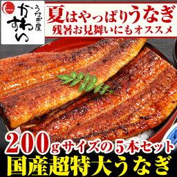 超特大うなぎ蒲焼き 200g×5本セット【お中元 ウナギ 鰻 国産 贈り物 残暑見舞い】