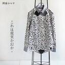 河谷シャツ メンズ 長袖 ボタンダウンシャツ おしゃれシャツ【Dari-P ダリ】XS / S /