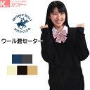 【送料無料】スクールセーター スクール セーター 女子 レディース Vネック ブランド 女子中学生 女子高校生