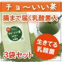 乳酸菌入り 粉末茶 腸いい茶 50g×3袋セット/深蒸し茶(緑茶)の微粉末茶 お茶 発酵食品【RCP】【betu】