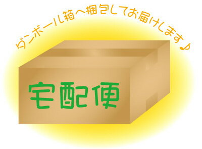 ◇宅配便オプション(箱梱包)