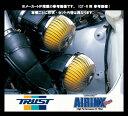 ☆トラスト エアインクスBタイプ RX-8 SE3P/13B-MSP用 TRUST AIRINX B-Type MZ-M011B / 12541011