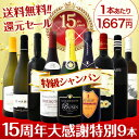 【送料無料】15周年大感謝!特級シャンパンまで入ったスペシャル9本セット!どれも格上極上のワインばかりの超厳選プレミアム9本!【0501_free_f】