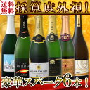 【送料無料】第64弾!ベスト・オブ・スパーク!京橋ワイン厳選!高級クレマンも入った極旨泡ばかりの辛口スパークリングワイン6本セット!
