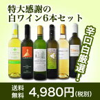 【送料無料】第42弾!美味しい辛口白ワインだけを京橋ワインが厳選!特大感謝の大満足白ワイン6本セット!!【cp】