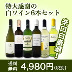 【送料無料】第48弾!美味しい辛口白ワインだけを京橋ワインが厳選!特大感謝の大満足白ワイン6本セット!!