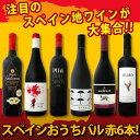 【送料無料】スペイン全土の地ワイン満喫!!スペインおうちバル...