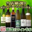 【送料無料】第50弾!京橋ワイン厳選!これぞ極旨辛口白ワイン!『白ワインを存分に楽しむ!』味わい深いスーパー・セレクト白6本セット!