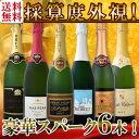【送料無料】第71弾!ベスト・オブ・スパーク!京橋ワイン厳選!高級クレマンも入った極旨泡ばかりの辛口スパークリングワイン6本セット!
