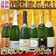 【送料無料】第72弾!ベスト・オブ・スパーク!京橋ワイン厳選!高級クレマンも入った極旨泡ばかりの辛口スパークリングワイン6本セット!