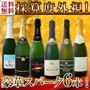 【送料無料】第89弾!ベスト・オブ・スパーク!京橋ワイン厳選!高級クレマンも入った極旨泡ばかりの辛口