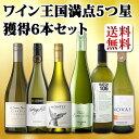 【送料無料】ワイン王国創刊100号記念!今度は白ワインだけ!歴代5つ星のトップ・オブ・トップの白ワイン6本セット!