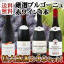 【送料無料】プルミェ・クリュ(一級畑)が2本★厳選ブルゴーニュ赤ワイン4本セット!