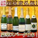 【送料無料】第93弾!ベスト・オブ・スパーク!京橋ワイン厳選!高級クレマンも入った極旨泡ばかりの辛口