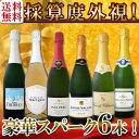 【送料無料】第96弾!ベスト・オブ・スパーク!京橋ワイン厳選...