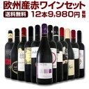 ワイン 第90弾!超特大感謝!≪スタッフ厳選≫の激得赤ワインセット 12本!