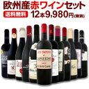 ワイン 【送料無料】第92弾!超特大感謝!≪スタッフ厳選≫の激得赤ワインセット 12本!