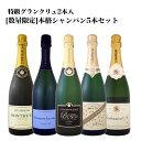 [1,500円以上で送料無料]【送料無料】全てシャンパン!しかもグランクリュ2本入!数量限定シャンパンセット(スパークリングワインセット) 5本!